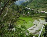 FILIPPINE-2513