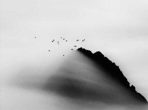 artico-ultima-frontiera-Carsten_Egevang